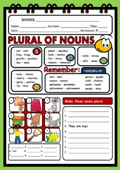 Plural of nouns worksheet preview