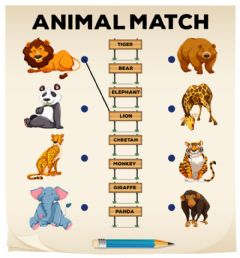 Animals match worksheet preview