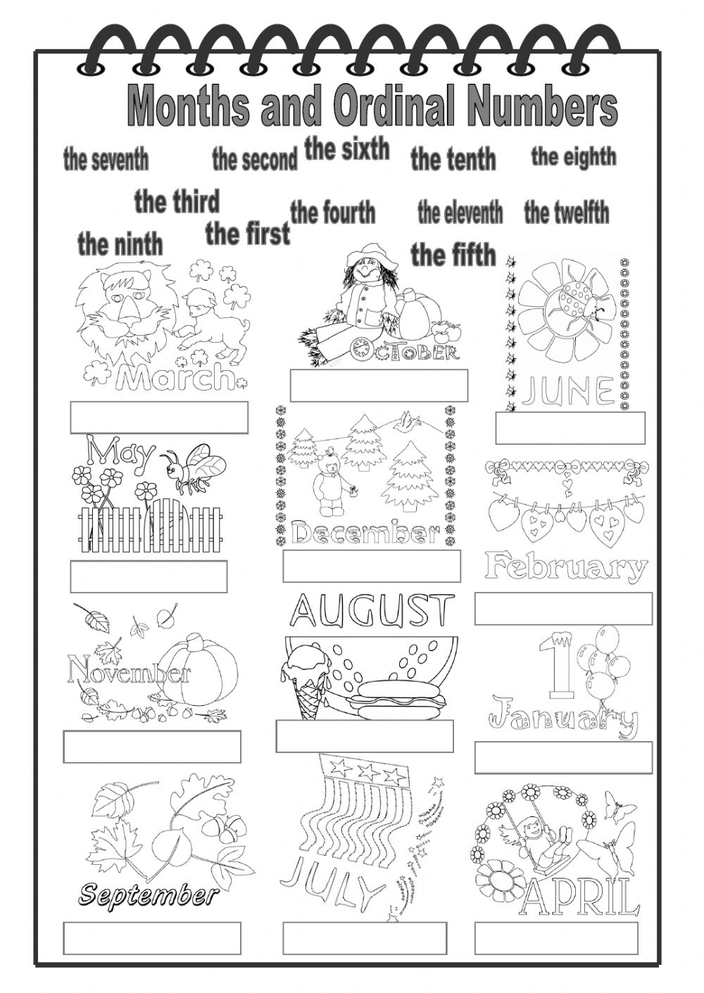 Months and Ordinal Numbers - Interactive worksheet