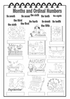 Months and Ordinal Numbers worksheet preview