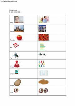 Interactive worksheet plurals with s, es, ies, ves