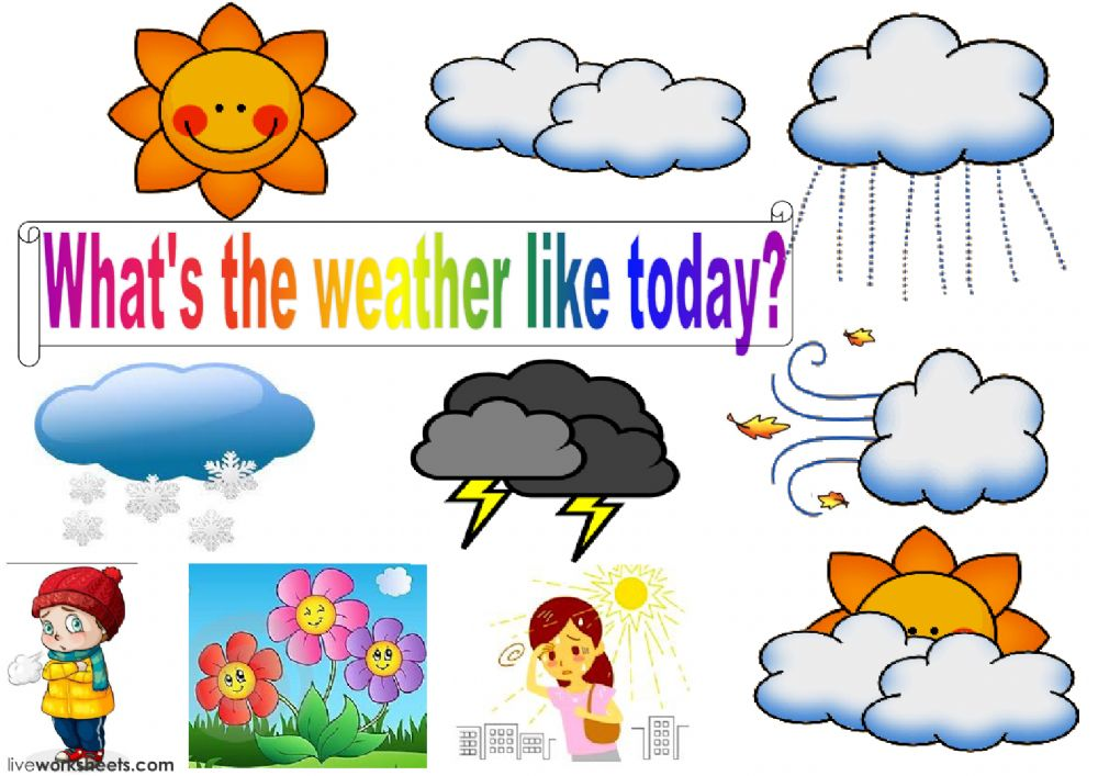 What's the weather like today? - Ficha interactiva