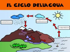 Ficha interactiva CICLO DELL'ACQUA