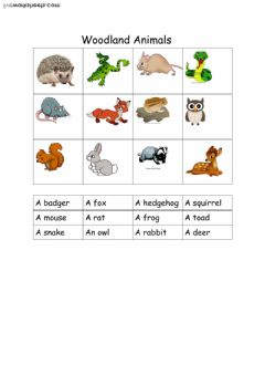 Interactive worksheet woodland animals