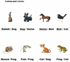Interactive worksheet Animals. Listen and circle.
