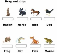 Interactive worksheet Animals. Match the correct word.