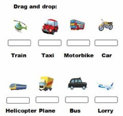 Interactive worksheet Transport. Drag and drop
