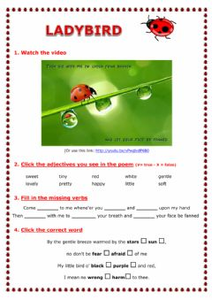 Interactive worksheet Ladybird