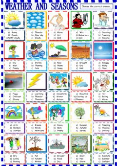 Weather and seasons: multiple choice worksheet preview