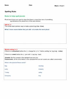 Plural Spelling Rules worksheet preview
