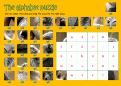 Interactive worksheet The alphabet puzzle