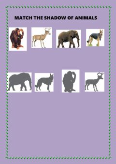 Interactive worksheet MATCH THE SHADOW OF ANIMALS