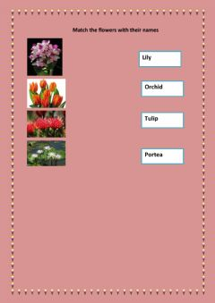 Interactive worksheet match the flowers with their names