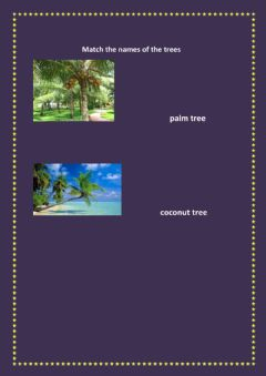 Interactive worksheet match the names of the trees