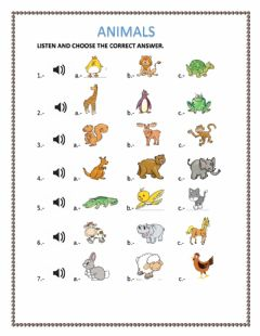 ANIMALS worksheet preview
