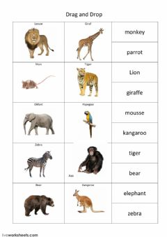 Interactive worksheet join animals
