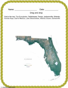 Interactive worksheet Florida-1