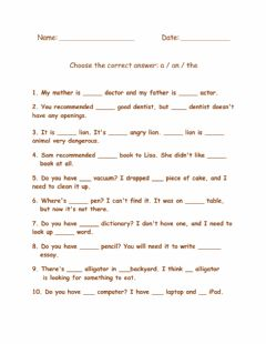 Interactive worksheet Indefinite Article-5