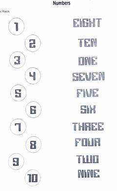 Interactive worksheet Numbers. Match2