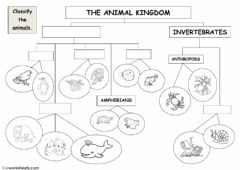 Ficha interactiva The animal kingdom - classification diagram