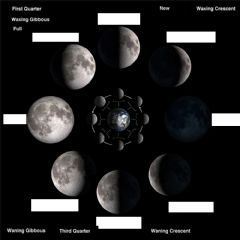 Interactive worksheet phases of moon