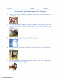 Interactive worksheet Difference Between Mass and Weight