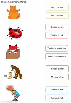 Ficha interactiva Simple Sentences Match