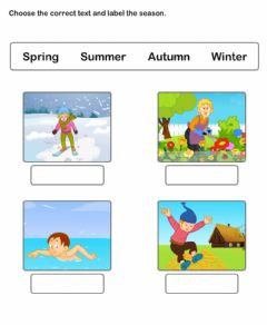 Interactive worksheet Seasons in English