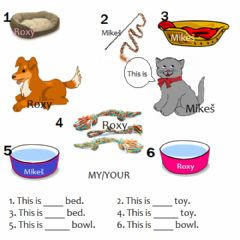 Interactive worksheet Possessive pronouns: my-your