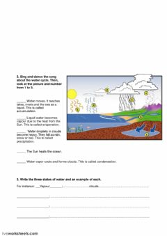 Ficha interactiva Water cycle and states of water