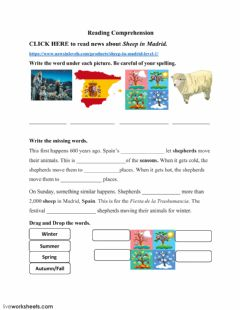 Interactive worksheet Sheep in Madrid - Level 1