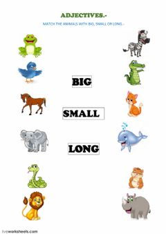 Interactive worksheet ADJETIVES (Big,Small, Long, Short)