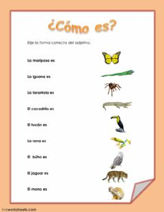 Ficha interactiva Animales de colores