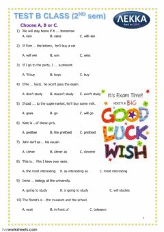 Grammar Test worksheet preview