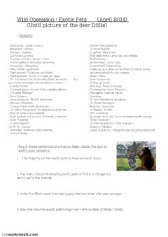 Wild Obsession National Geographic worksheet preview