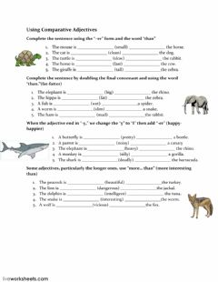 Using Comparative Adjectives worksheet preview