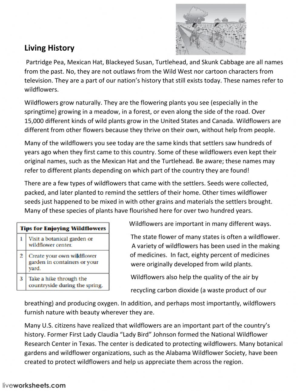 - Compare-Contrast Comp Passage 4 - Interactive Worksheet