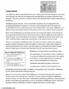 Interactive worksheet Compare-Contrast Comp Passage 4