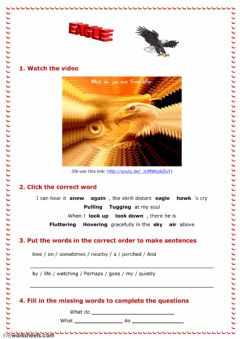 Interactive worksheet Eagle