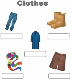 Interactive worksheet clothes. Multiple choice.