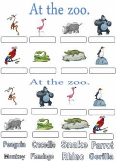 Interactive worksheet At the zoo. Write-drag and drop