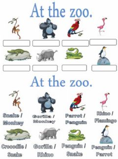 Interactive worksheet At the zoo. Choose-multiple choise.