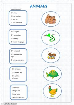 Interactive worksheet Animals descriptions