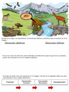 Interactive worksheet Los ecosistemas