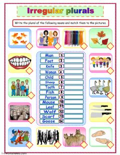 Irregular plural nouns worksheet preview