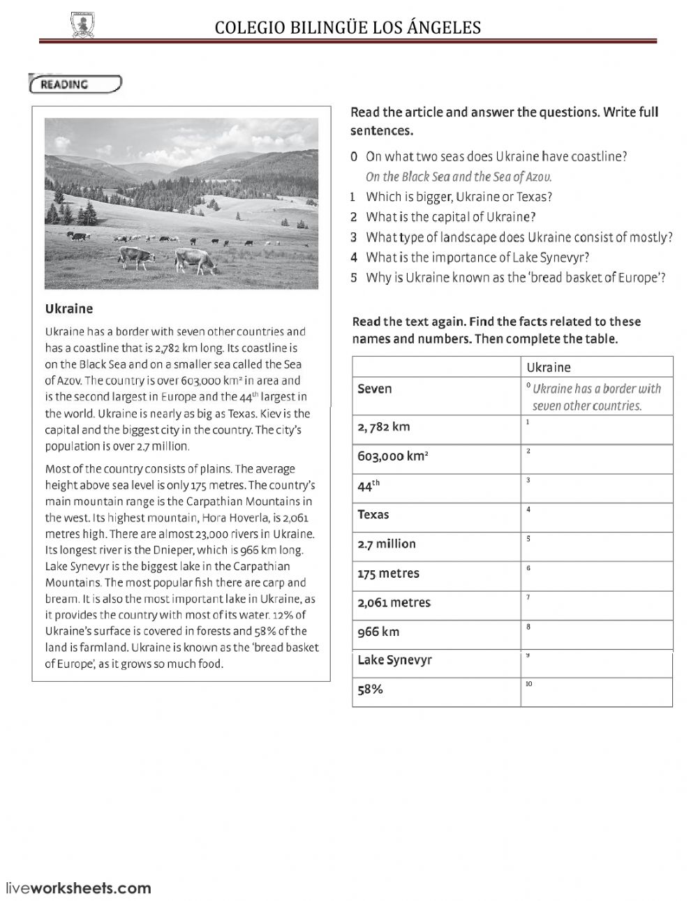 Quiz Vocabulary and Reading 7th Grade - Interactive worksheet