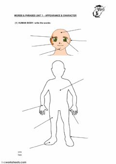 Interactive worksheet Vocabulary: Appearance - Character