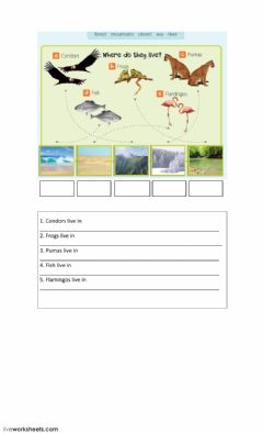 Interactive worksheet Nature