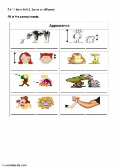 Ficha interactiva Adjectives