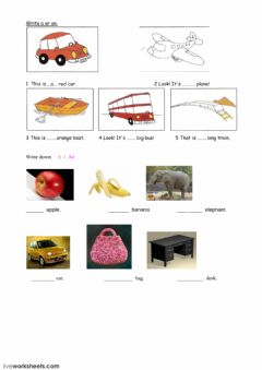Interactive worksheet write a-an